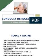 Conducta de Ingesta