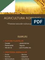 agricultura-romaniei.ppt
