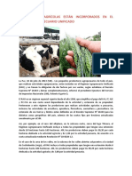 Regimen Agropecuario Unificado