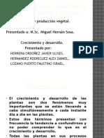 # 7 Crecimiento y Desarroll.pptx