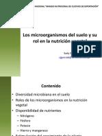 Rol Microorganismos en El Suelo