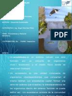 Ecosistemas y Factores Limitativos