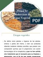Producción de Drogas Vegetales