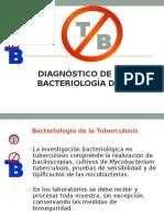 Bacteriologia de La TB