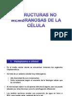 ESTRUCTURAS_NOMEMBRANOSAS