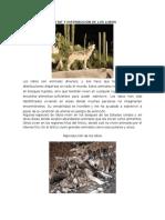Hábitat y Distribución de Los Lobos