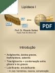quimicaalimentoslipideosi-091008121014-phpapp02