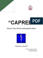 Manual_CAPREB_2011[1] (1)