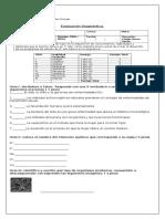 Diagnóstico Ciencias Naturales 8vo