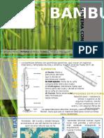 Sistema Constructivo de Bambu