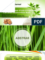 Standarisasi & Studi Fitokimia Curcuma Xanthorrhiza Roxb.
