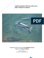 Behavioural development of a harbour porpoise (Phocoena phocoena) mother-calf pair in captivity