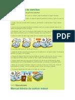 Germinacion de Semillas Interior y Exterior