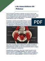 Anatomia da musculatura do Assoalho.doc