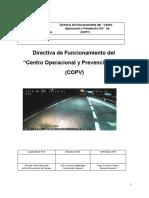 Directiva de Funcionamiento del COPV.docx