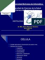 Histologia Integraciòn Celula Ciclo Celular