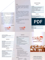 Setidp 2015.pdf