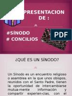sínodos y concilios