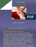 DL Lp MKD Protocol 5