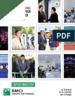 BMCI Rapport Annuel 2014