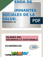 seminario 18  luisa paola paez romero.pptx