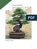 Guia-Practica-para-Crear-tu-Bonsai.pdf