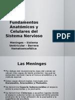 Meninges - Ventrículos - Barrera Hematoencefálica