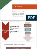 Exposicion Fisiologia Memoria