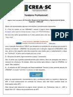 Orientacoes Novo Profissional VERSAO FINAL 30 10 15