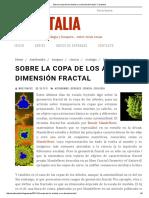 Sobre La Copa de Los Árboles y Su Dimensión Fractal - Forestalia