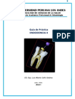 Guia de Endodoncia II Upla 2015-i