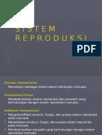 2-Sistem Reproduksi.pptx