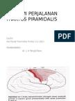 Anatomi Perjalanan Traktus Piramidalis