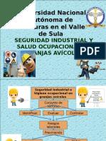 Seguridad Industrial y Salud Ocupacional en Granjas Avicolas