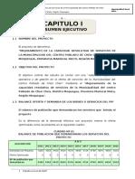 Capitulo I - Resumen Ejecutivo
