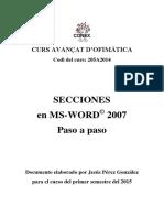 CONEX Secciones MS Word 2007 Paso a Paso