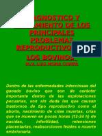 Enfermedades reproductivas de los bovinos.ppt
