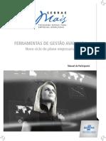FGA Novo Ciclo Do Plano Empresarial Manual Do Participante Alta