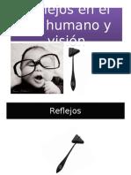 REFLEJOS EN EL SER HUMANO.ppt