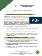 Estructura r.s.a Virtual