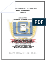 Trabajo Practica Procesal Penal (Audiencia Preliminar) Modificada