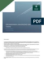 Organigrama Santo Tomas, Niveles jerarquicos