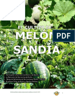 EL CULTIVO DE MELÓN Y SANDÍA