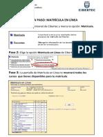 GUÍA - Matricula Linea Paso Paso