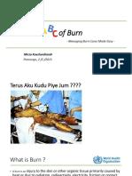 Dr. Mirza Koeshardiandi ABC of Burn