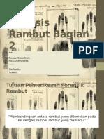ppt analisis rambut (forensik)