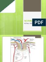 Retinal Vessels.pptx