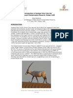 Arabian Oryx Reintroduction 2007
