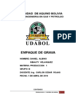 EMPAQUE_DE_GRAVA.pdf