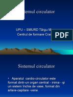6 - Sistemul circulator